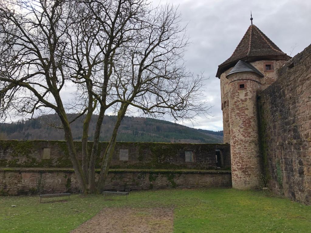Burg Hischhorn
